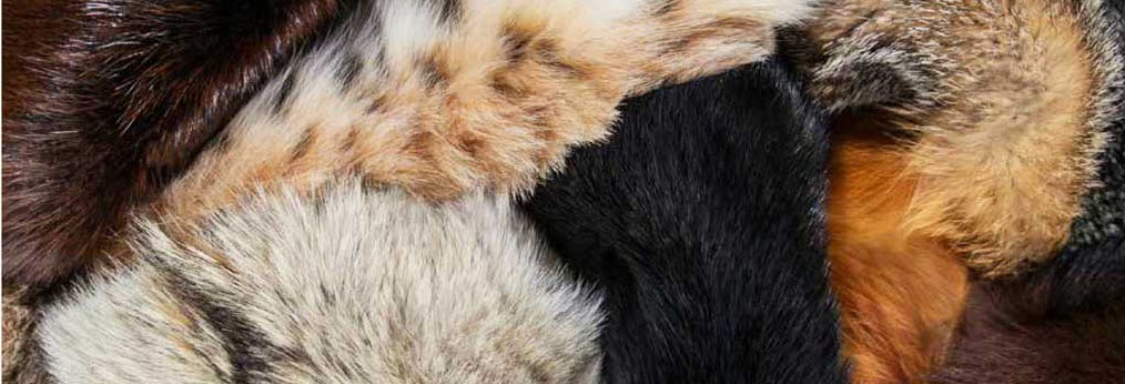natural-fur-italian-version-lr-11_low